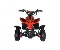Quad Mini Python sport 50cc