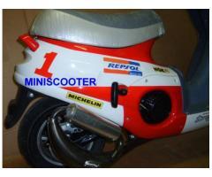 Mini scooter per bambini a scoppio 2T rosso bianco