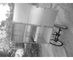 bici elettrica tre ruote