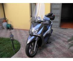 PERFETTO X-CITY 250 ANNO 2008