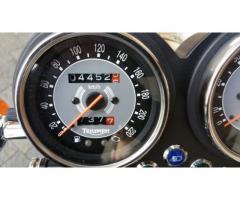 BONNEVILLE T100 - 50 TH  - 2009