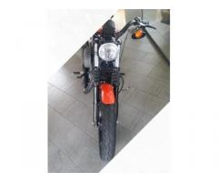 Harley Davidson 1200 Nightster Perfetta
