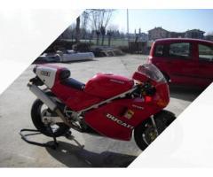 Ducati Altro modello - 1991