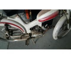MOTOM Gipsy 50 50cc cc 50