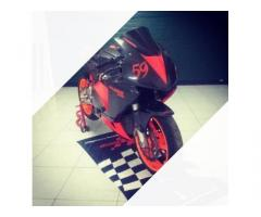 CBR 600 RR pronto gara pista