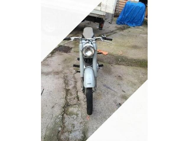 Ducati Scrambler - Anni 50