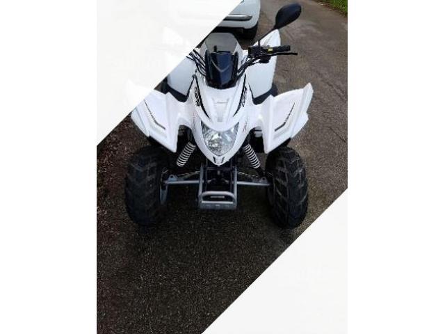 Aeon New Cobra 50cc - 2008