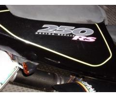 APRILIA RS 250-VENDUTA-