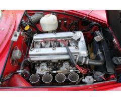 Alfa Romeo - Giulia Sprint Speciale (101.21)