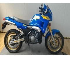 YAMAHA TDR 250 Export price www.actionbike.it