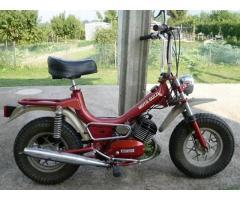 moto guzzi magnum cc 50 immatricolata 1977