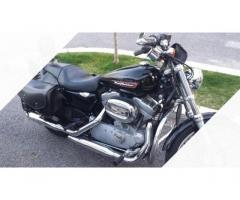 Harley-Davidson Sportster 883 - 2008