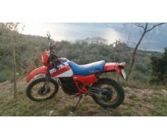 HONDA XL 600 del 1984 + molti pezzi di ricambio