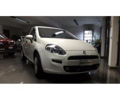 FIAT Punto 1.2 8V 5 porte Street kmo UFFICIALE ITALIA