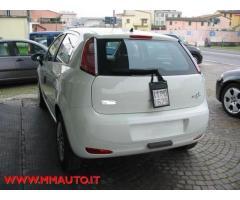 FIAT Punto 1.2 8V 5 porte Street  KM O!!!!