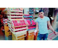 Io sono in Egitto