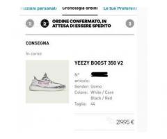 Adidas Yeezy bost 350 zebra