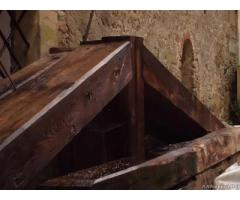 Travi antichi castagno - capriate