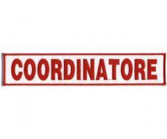 Societa leader ricerca 1 coordinatore rete vendita