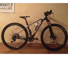 "Mountain Bike Olympia IRON 29"""