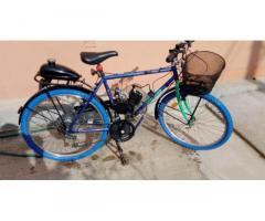 Mountain-bike 26 Legnano con motore
