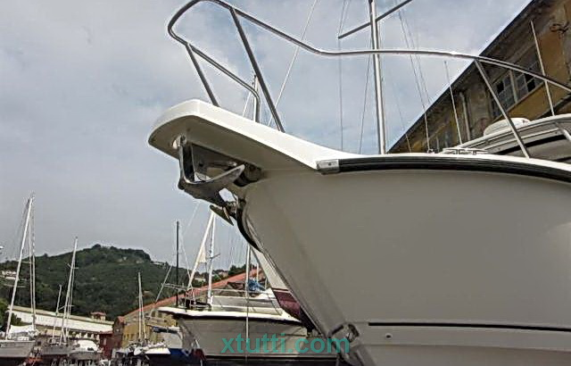Boston Whaler Conquest 305 motori Verado due per 300 cv