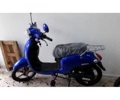 Biciclette elettrica