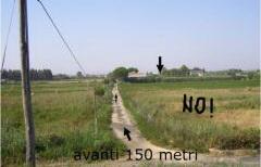 Terreno edificabile 5000mq