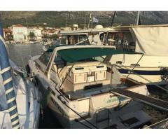 Sea ray 30 we, gia' in grecia
