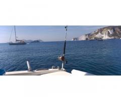 Barca a motore Mochi craft 31 dominator