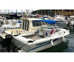 Fisherman Pro Line 220 I/C