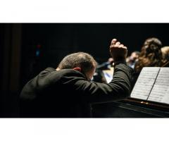 Organista Pavia