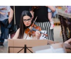 Violinista professionista a Vercelli