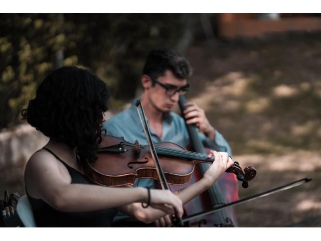 Violinista professionista a Pavia per musica matrimonio