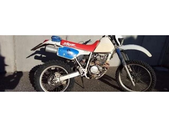 Honda Dall'Ara XR 250 - 1993