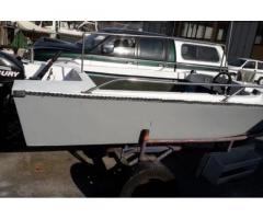 Barca 4,5 metri con carrello in acciaio