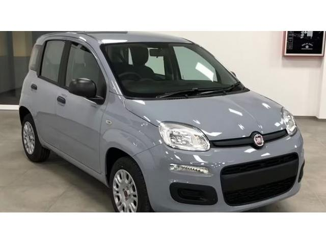 Fiat Panda 1.2 69cv S&S Easy E6D (KM0)
