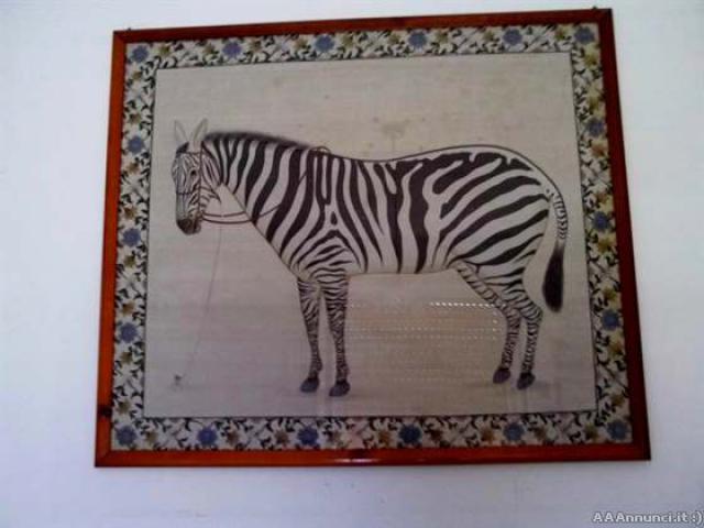 Quadro con zebra - Puglia