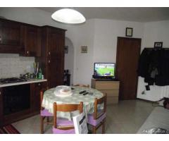 Appartamento in Affitto - CASTELLINA SCALO - Siena