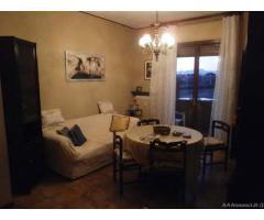 Appartamento di 2 locali in Affitto - Pavia