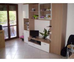 Arezzo Affitto Appartamento