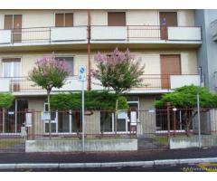 Novara Affitto Appartamento