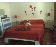 Appartamento in Affitto di 65mq - Livorno